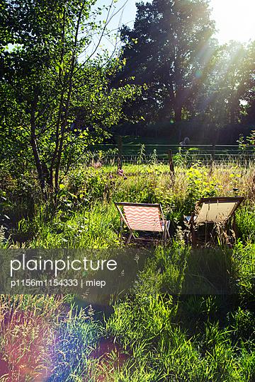 Liegestühle in Wiese - p1156m1154333 von miep