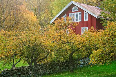 p575m784916f von Mikael Svensson