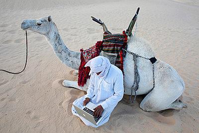 Bedouin using a laptop in the Sahara, Douz, Kebili - p871m821260 by Godong
