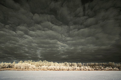 Dark clouds and winter landscape - p4422235f by Design Pics