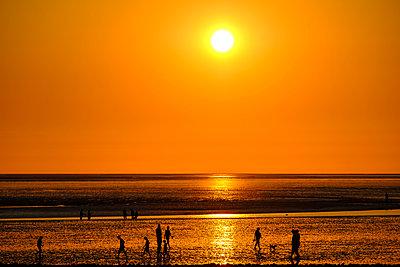 Spaziergänger im Wattenmeer bei Sonnenuntergang - p1463m2292942 von Wolfgang Simlinger