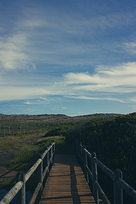 South Africa, Boardwalk in the landscape - p1640m2246064 by Holly & John