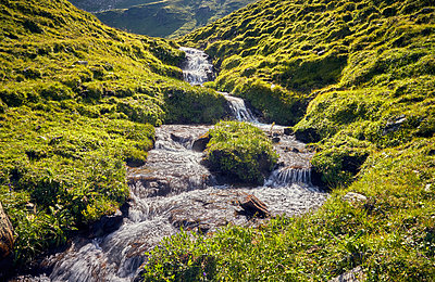 Mountain stream - p704m1476010 by Daniel Roos