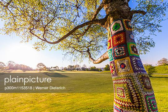 p300m1153518 von Werner Dieterich