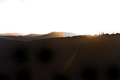 South Africa - p075m1025554 by Lukasz Chrobok