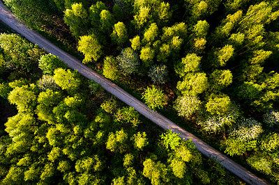 Germany, Baden-Wuerttemberg, Swabian Alb, Fils Valley, Aerial view of Schurwald in spring - p300m1587295 by Stefan Schurr
