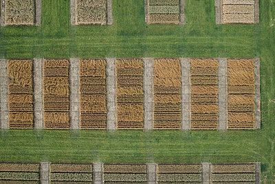Full frame aerial view of crops in agricultural landscape, Stuttgart, Baden-Wuerttemberg, Germany - p301m1406294 by Stephan Zirwes