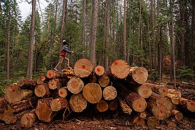 Junge der auf großem Stapel von Holzstämmen geht - p756m2254069 von Bénédicte Lassalle