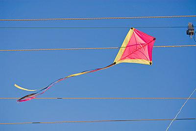 Kite in wires - p1125m917373 by jonlove