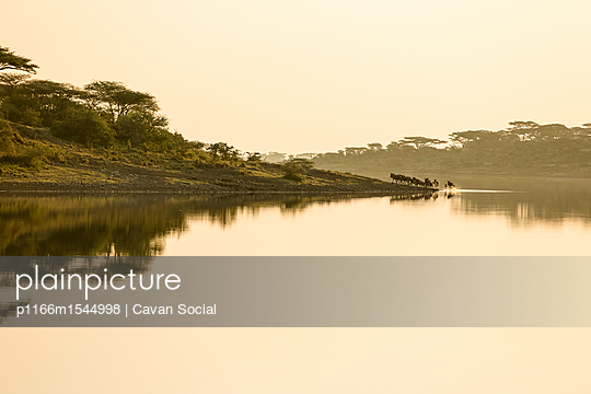 p1166m1544998 von Cavan Social