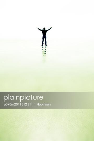p378m2011512 von Tim Robinson