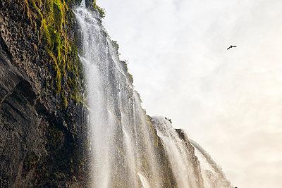 Wasserfall Seljalandsfoss - p1305m1190714 von Hammerbacher
