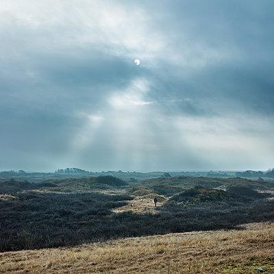 Dünenlandschaft, Nes, Ameland - p1370m1445205 von Uwe Reicherter