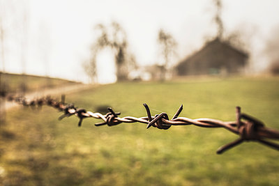 Old barbed wire fence with farmhouse in background - p300m2206558 by Studio 27