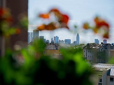 Frankfurt Skyline - p801m2257692 by Robert Pola