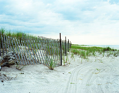 Beach at Hamptons New York - p3313065 by Don Freeman
