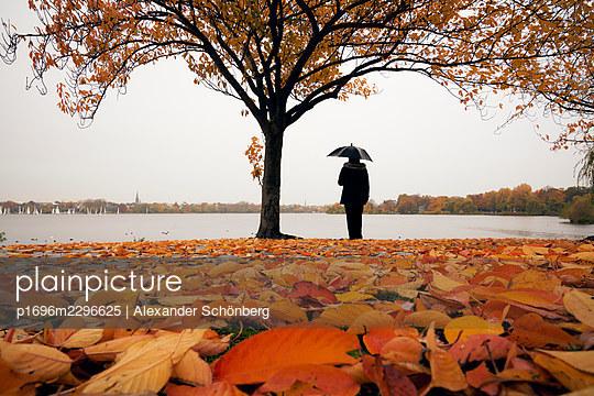 Rambler with umbrella, autumn colours, Hamburg - p1696m2296625 by Alexander Schönberg