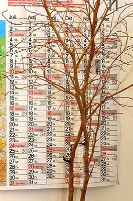Tote Büropflanze mit Jahresplaner - p1164m951942 von Uwe Schinkel