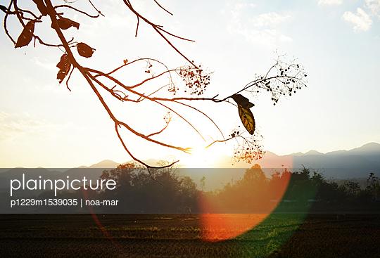 Sonnenuntergang - p1229m1539035 von noa-mar