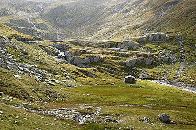 Swiss - p1203m1071680 by Bernd Schumacher