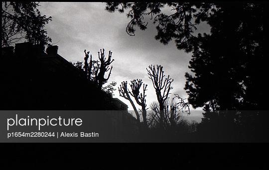 France, Paris, Parc Monceau - p1654m2280244 by Alexis Bastin
