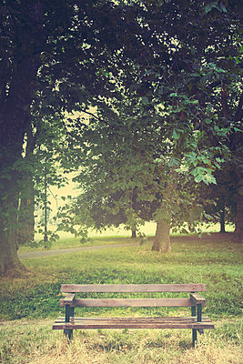 Bench in Park - p1248m1169575 by miguel sobreira