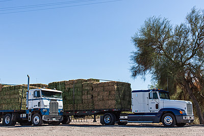 Two trucks transporting hay bales - p1291m2181570 by Marcus Bastel
