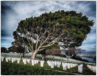 Soldatenfriedhof Point Loma - p1154m1110201 von Tom Hogan