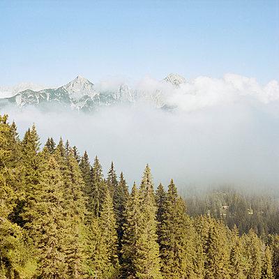 Karwendel Gebirge - p1214m1020422 von Janusz Beck
