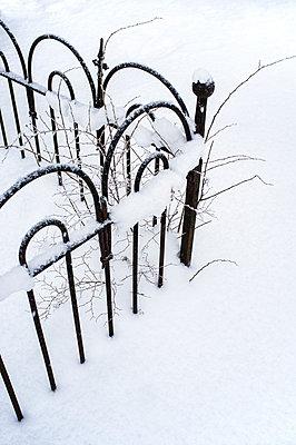 Garden fence - p971m1104611 by Reilika Landen