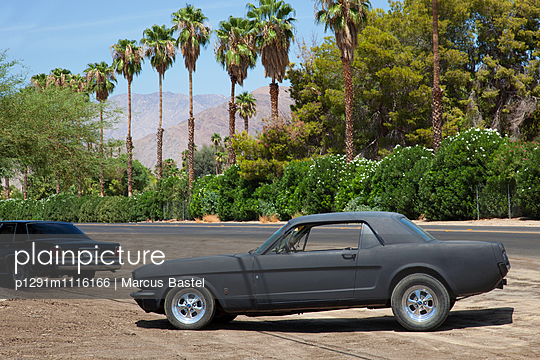Mustang - p1291m1116166 by Marcus Bastel