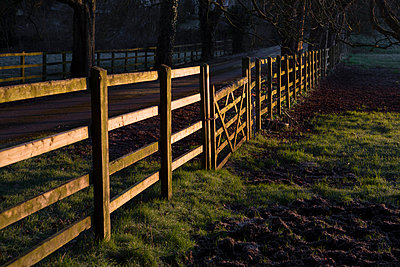 Wooden fence in the countryside - p1057m1115533 by Stephen Shepherd