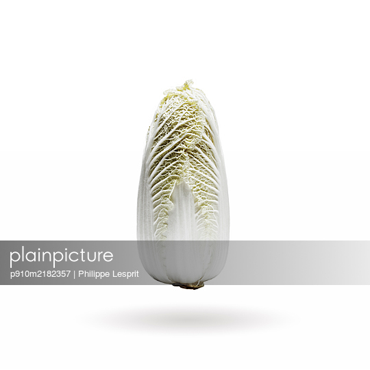 Chinese cabbage - p910m2182357 by Philippe Lesprit