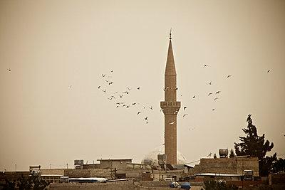 Tauben fliegen um ein Minarett in der Pilgerstadt Sanliurfa, Türkei - p586m971421 von Kniel Synnatzschke