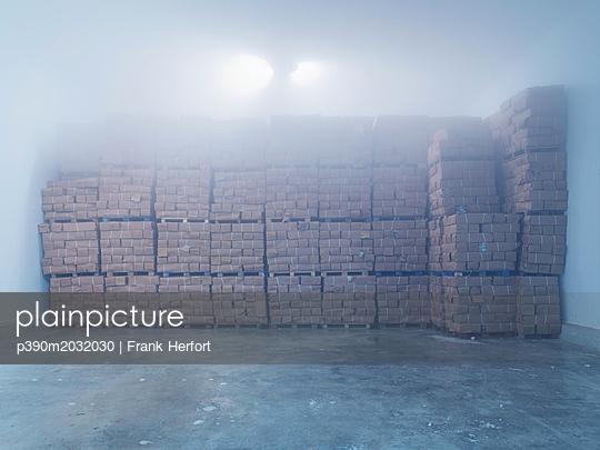 Tiefgefrorener Fisch im Kühllager  - p390m2032030 von Frank Herfort