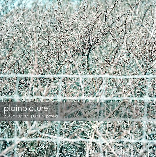 Grenze - p545m1071871 von Ulf Philipowski