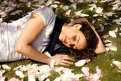 Magnolia - p3790354 by Scheller
