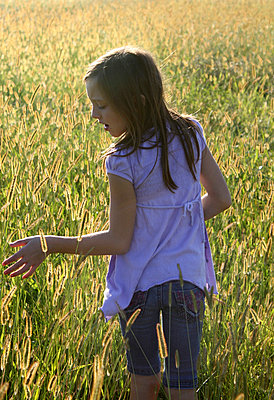 Girl in cornfield - p1019m739854 by Stephen Carroll