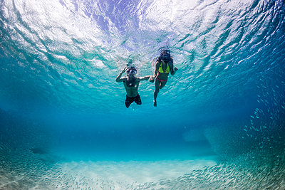 Underwater view of couple swimming with tropical fish, Waimea, on North Shore of Oahu, Hawaii, USA - p343m1520733 by Sean Davey