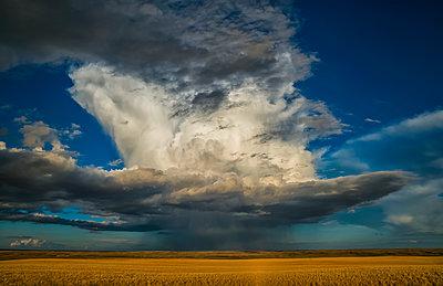 Large thunderstorm storm cell over the prairies; Saskatchewan, Canada - p442m1449119 by Robert Postma