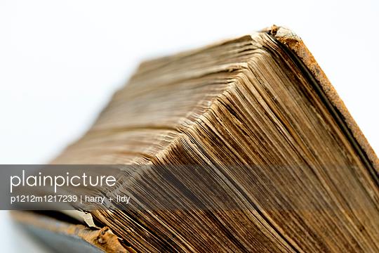 Altes Buch - p1212m1217239 von harry + lidy