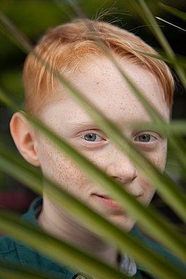 Junge schaut durch Blätter - p045m1466203 von Jasmin Sander