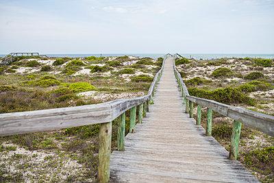 Florida - p1362m1226667 by Charles Knox