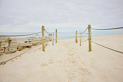 South Africa, Beach - p1640m2242066 by Holly & John