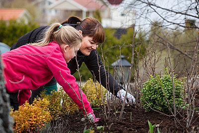 mother and daugther cleans weeds - p312m1551722 by Scandinav Images