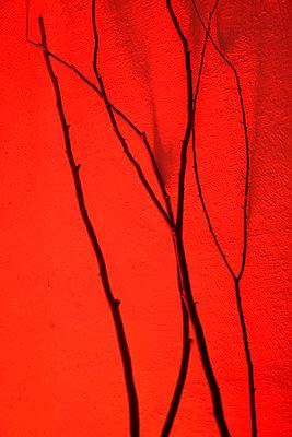 Twig - p876m816429 by ganguin
