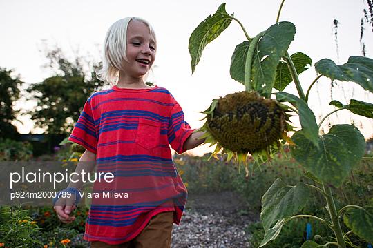 p924m2003789 von Viara Mileva