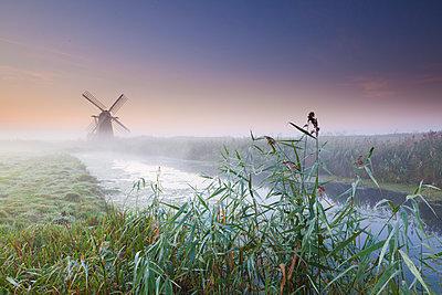 Herringfleet Mill in Mist, Suffolk, England - p651m2007052 by Tom Mackie