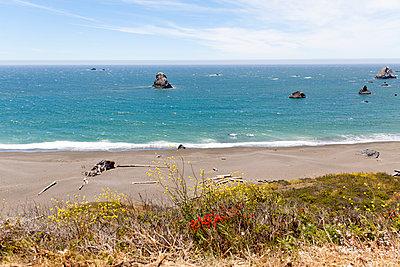 Californian coast - p756m932171 by Bénédicte Lassalle