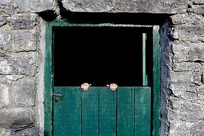 Hands on door - p1082m1071879 by Daniel Allan